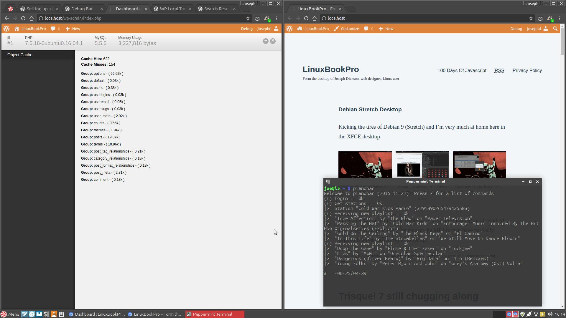 Local WordPress development in Peppermint OS